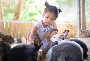 Niña asiática alimentando conejos en una granja