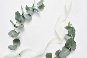 Eucalyptus leaves and ribbon frame on white background