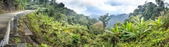 Panorama of jungle, highway, mountains, and cloudy sky