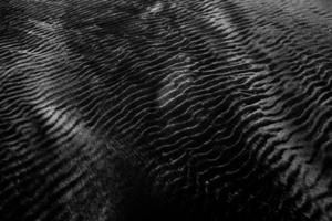 Black and white photo of fabric ridges