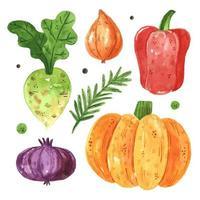 conjunto de verduras de temporada