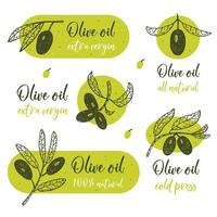 Olive branch with lettering  vector