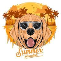 Golden dogs wearing sunglasses  vector