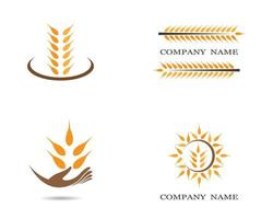 Wheat grain logo icon set vector