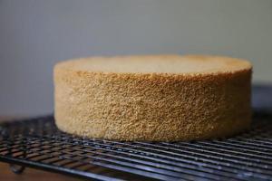 Close-up of cake sponge on cooling rack