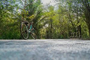 Low angle view of a bike parked on empty road in tropical forest