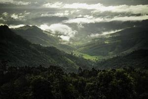 Green tropical rain forest and mountain range