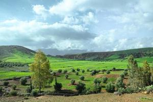 Landscape view of countryside crop field in Morocco photo