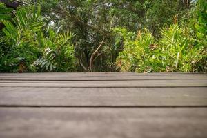 Vista de ángulo bajo del piso de madera oscura con exuberante bosque verde