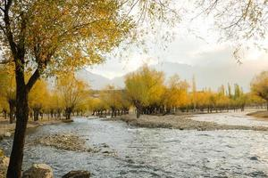 River flowing through colorful foliage grove in autumn photo