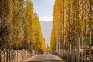camino hacia khaplu en otoño en la aldea de ghowari, pakistán