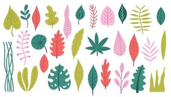 Set of colorful tropical plants and palm leaves