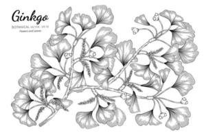 ginkgo dessiné à la main vecteur