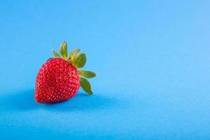 Strawberry on blue backdrop photo