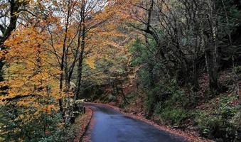 estrada de asfalto preta