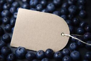Blueberry background with place holder label