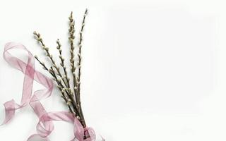 Bouquet of willow blossoms with ribbon