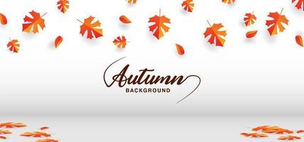 hojas de otoño en pared blanca y piso