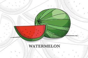 mão desenhada fruta melancia