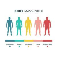 Body mass index colorful chart