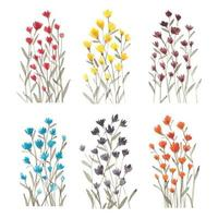 Wildflower watercolor set vector