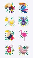 Exotic colorful birds set vector