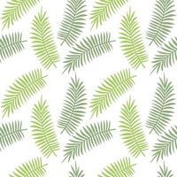 hojas tropicales de patrones sin fisuras vector