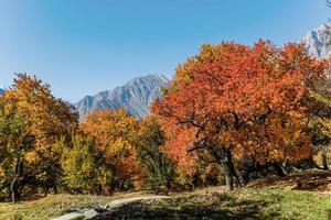 Follaje colorido en otoño en el valle de Hunza, Pakistán