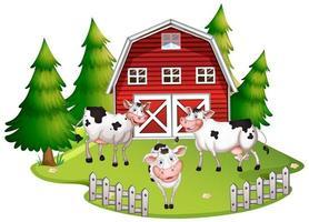 Cows at farm land vector