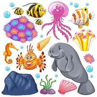 Conjunto de criaturas marinas y corales sobre fondo blanco.