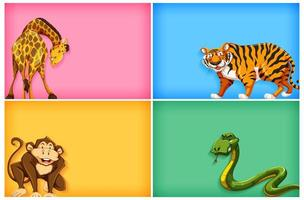 Colorful templates with animals