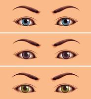 conjunto de área del ojo humano de cerca vector