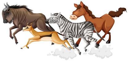 Estilo de dibujos animados de grupo de animales salvajes corriendo vector