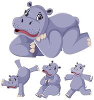 Set of hippopotamus cartoon character