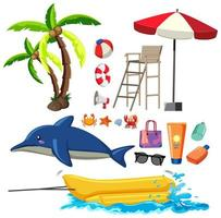 Summer set with dolphin and beach items vector