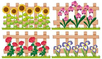 Different types of flowers in the garden vector