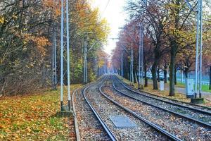 paysage avec des lignes de tram