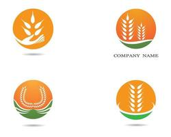Wheat Symbol Icons vector