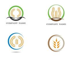 Wheat Icon Logos Set vector