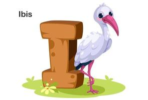 I for Ibis bird animal vector