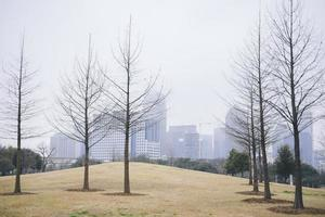 Dallas skyline in de mist