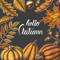 Autumn background with hand drawn leaves and pumpkins vector