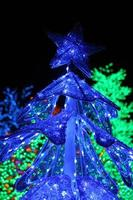 Rows of colorful LED trees decoration