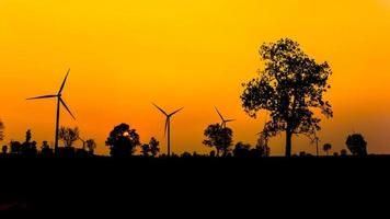 Silhouette wind turbine power with sunset and tree