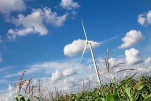 Wind Turbine for alternative energy on background sky on Cassava photo
