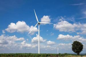 Wind Turbine Farm photo
