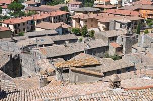 Panoramic view of Bolsena. Lazio. Italy.
