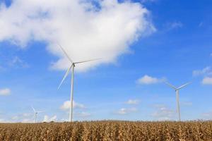 Wind Turbine on a Wind Farm