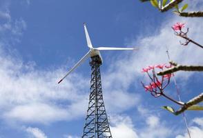 Eco power, wind turbines photo