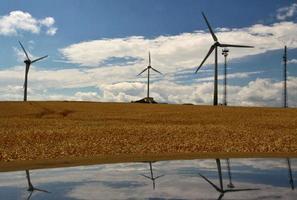 usina eólica com campo de grãos